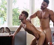 Loirinhos tattoados gay fazendo sexo